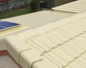 Roof Restoration Brisbane - Roof Cleaning & Painting
